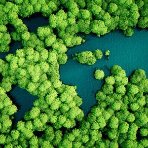 Mediación Ambiental